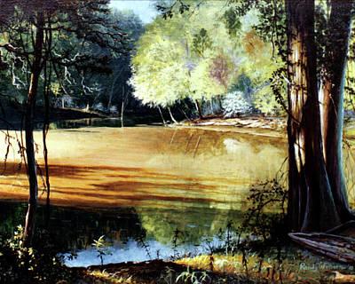 Sunlight On Village Creek Art Print