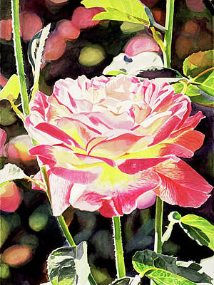 Painting -  Sunlight Roses by David Lloyd Glover