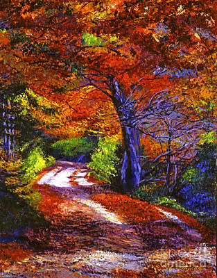 Maple Season Painting - Sunlight Through The Trees by David Lloyd Glover