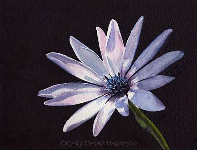 Painting - Sunlit Daisy by Kathy Nesseth