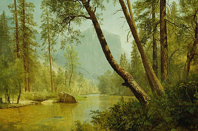 Americana Painting - Sunlit Forest by Albert Bierstadt