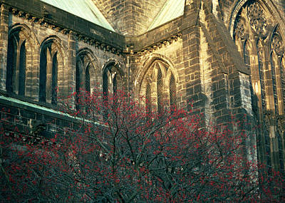 Photograph - Sunlit Glasgow Cathedral by Kenneth Campbell