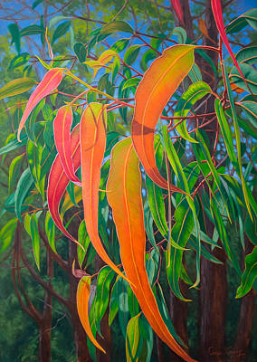 Gumtree Painting - Sunlit Gumleaves 16 by Fiona Craig