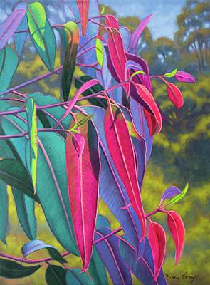 Sunlit Gumleaves 17 Original by Fiona Craig