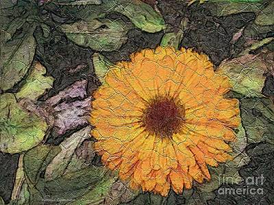 Photograph -  A Touch Of Sunshine by Kathie Chicoine