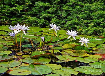 Sunlit Lily Pond By Kaye Menner Art Print by Kaye Menner