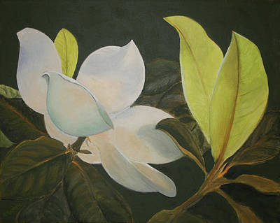 Painting - Sunlit Magnolia by Sandy Murphree Jacobs