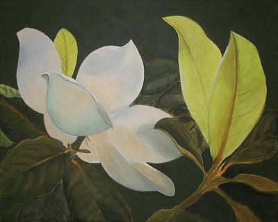 Sunlit Magnolia Art Print