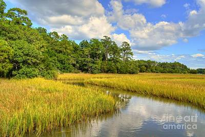 Photograph - Sunlit Marsh by Kathy Baccari