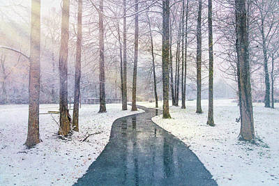 Photograph - Sunlit Path In The Snow by Debra and Dave Vanderlaan