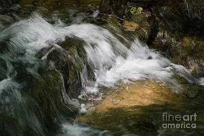 Photograph - Sunlit Stream Detail by Chris Scroggins