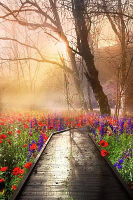 Photograph - Sunlit Wildflowers by Debra and Dave Vanderlaan