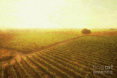 Digital Art - Sunrise Over The Vineyard by Diane Diederich