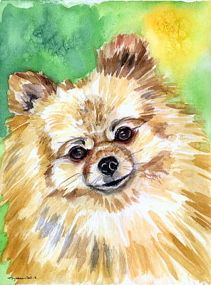 Watercolor Pet Portraits Painting - Sunny - Pomeranian by Lyn Cook