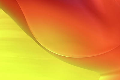 Digital Art - Sunny Abstract by Bonnie Bruno