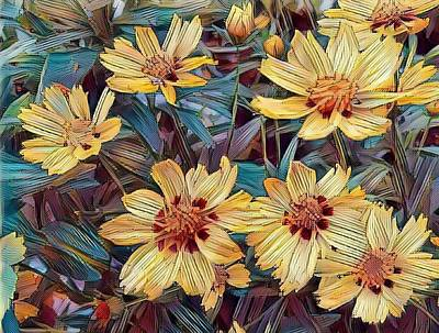 Photograph - Sunny And Yellow by Caryl J Bohn