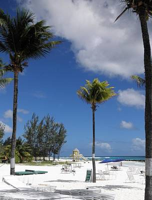 Photograph - Sunny Barbados by Neil Zimmerman