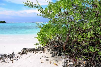 Photograph - Sunny Beach Of Tropical Island by Jenny Rainbow