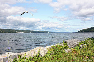 Photograph - Sunny Day At Seneca Lake by Trina Ansel