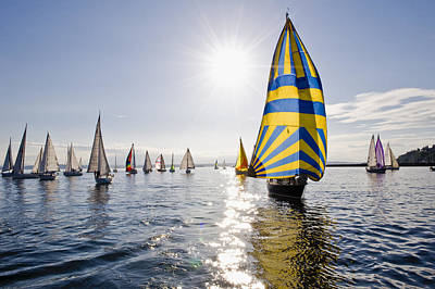 Sunny Day Sailing Art Print by Tom Dowd