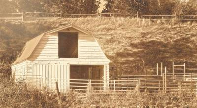 Photograph - Sunny Daze Barn by Amanda Smith