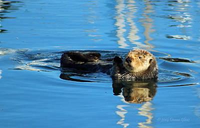 Sunny Faced Sea Otter Art Print