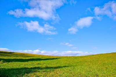 Photograph - Sunny Field At Tarrywile by Polly Castor