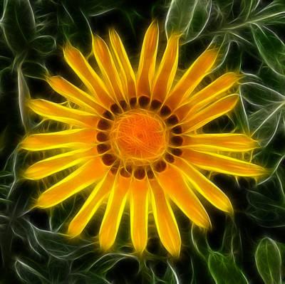 Photograph - Sunny Flower by Kathleen Stephens