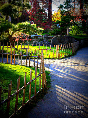 Photograph - Sunny Garden Path by Carol Groenen