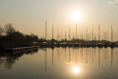 Best Sailing Photograph - Sunny by Georgia Mizuleva