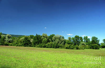 Photograph - Sunny Landscape by Michelle Meenawong