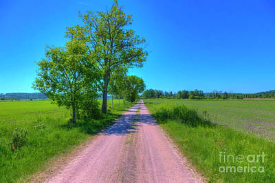 Royalty-Free and Rights-Managed Images - Sunny May Day by Veikko Suikkanen
