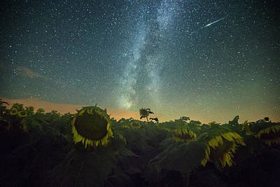Photograph - Sunny Perseid  by Aaron J Groen