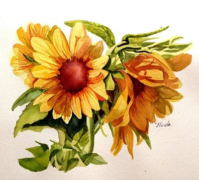 Sunflowers Royalty-Free and Rights-Managed Images - Sunny Shadows by Nicole Curreri