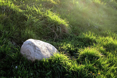 Photograph - Hard Rock, Soft Grass by Spyder Webb