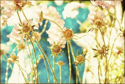 Sunny Strawflowers Art Print by Bonnie Bruno