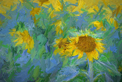 Photograph - Sunny Sunflower by Deb Buchanan