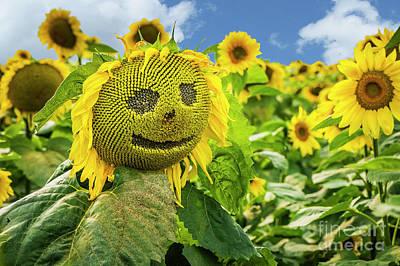 Photograph - Sunny Sunflower Smile by Joann Long