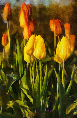 Digital Art - Sunny Tulips by JGracey Stinson