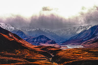 Photograph - sunny valley in Denali by Jeff Folger