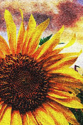 Photograph - Sunny Watercolors by Debra and Dave Vanderlaan