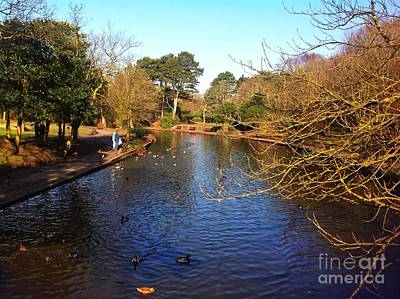 Photograph - Sunny Winter Lakeside by Joan-Violet Stretch
