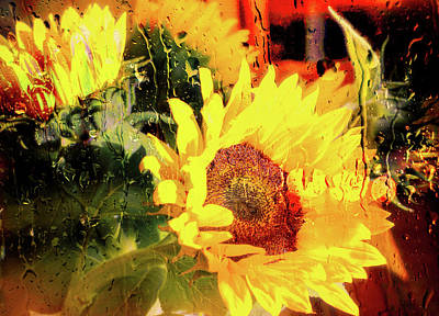 Photograph - Sunny With Showers by Michael Hope