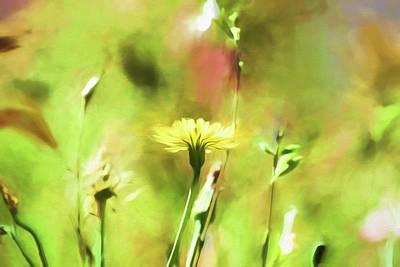 Sunny Yellow Flower Art Print by Bonnie Bruno