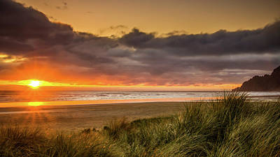 Photograph - Sunrays Over Manzanita by Don Schwartz