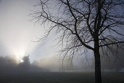 Photograph - Sunrays Through Fog by Craig Tuttle