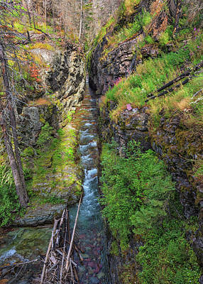 Photograph - Sunrift Gorge by Morris McClung