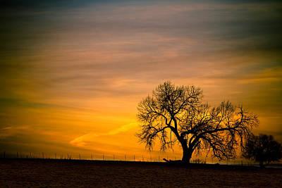 Impressionist Landscapes - Sunrise 1-27-2011 by James BO Insogna