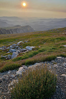 Photograph - Sunrise Along Mt. Evans Highway by Ray Mathis
