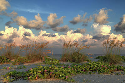Photograph - Sunrise And Sea Oats by Donna Kennedy